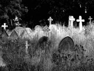 Know Your NME (Die! Die! Die!) mp3s